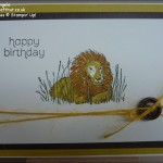 Zoo Review Birthday Lion