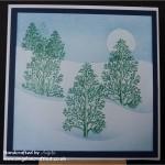 Clarity Challenge - Trees