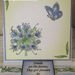agapanthus-easel-card